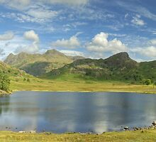 Blea Tarn In Summer by Jamie  Green