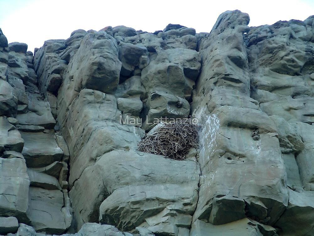 EAGLES NEST AND CLIFF SWALLOW DWELLINGS - BIG TIMBER, MT by May Lattanzio