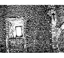 House of Bones  Photographic Print