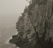 Sea Cliff at Quoddy Head by Roupen  Baker