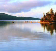Eagle Lake, Acadia National Park by Roupen  Baker