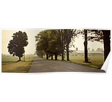 Country Road Landscape Poster