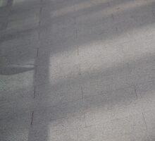 Shadows Tiles Morning by laurabaker