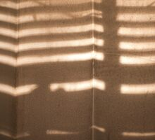 Shower Curtain Shadows by Anthony Billings
