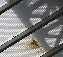 Roof detail by laurabaker