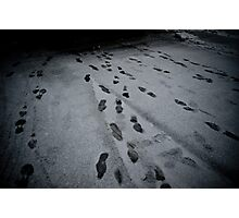 Step by Step Photographic Print