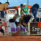 Cobar Rodeo  by Ruth Anne  Stevens