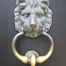LION KNOCKER by Lynn Wright