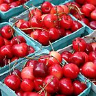 Sweet Cherries by Kelley Shannon