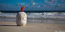On the Beach by Pene Stevens
