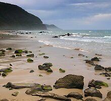 Beach at Wye River by Alex Fricke