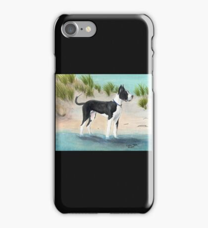 Great Dane Dog Beach Dunes Cathy Peek iPhone Case/Skin