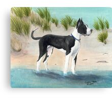 Great Dane Dog Beach Dunes Cathy Peek Canvas Print