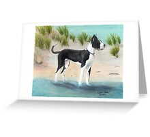 Great Dane Dog Beach Dunes Cathy Peek Greeting Card