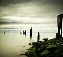 Shorncliffe, Old Fence by Ian  Clark
