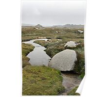 Streaming to the Snowy River from Mt Kosciuszko National Park Poster