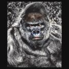 Gorilla - Who's The Daddy by naturelover