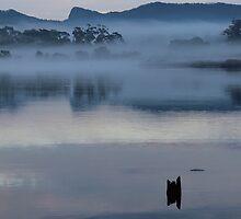 Leven river morn by gaylene