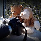 Learning Photography by waxyfrog