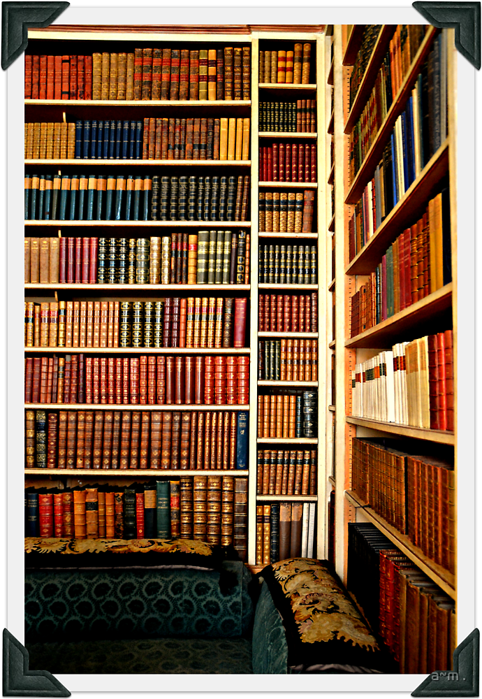 ~The Reading Room~ by a~m .