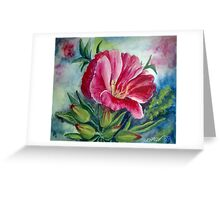 Godetia Greeting Card
