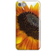 sun flower macro iPhone Case/Skin