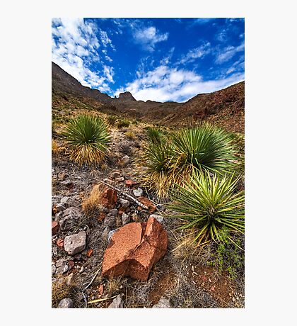 Franklin Mountains Photographic Print