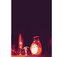 Totoro in the rain Photographic Print