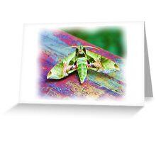 Wild Moth EX Greeting Card