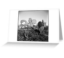 A Heart From A Cactus Greeting Card