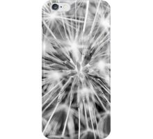 Dandelion clock - black and white iPhone Case/Skin
