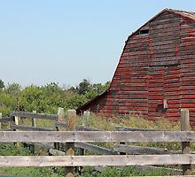 Old barn and corrals by Jim Sauchyn