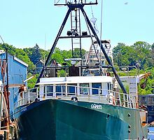 Osprey Fishing Vessel by joevoz