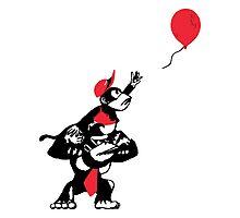 Balloon Apes Photographic Print