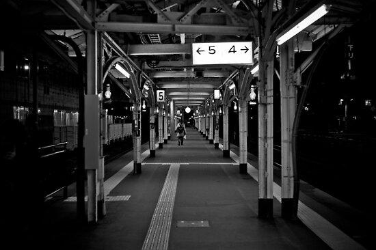 Walk this Way - Otaru , Hokkaido , Japan by sxhuang818