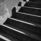 Steps by Peter Baglia