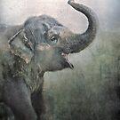 Happy elephant! by polly470