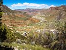 Beautiful Salt River Canyon by Lucinda Walter