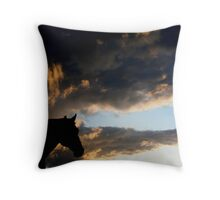 Rio in the Sunset Throw Pillow