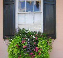 Window Box Beauty by Melanie McPike