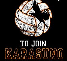 Training to join Karasuno Volleyball Club by ShadowFallen