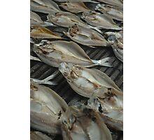 salt fish Photographic Print