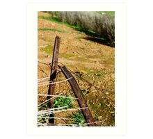 Rusted Star Pickets Art Print