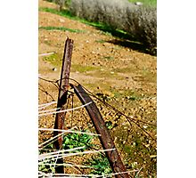 Rusted Star Pickets Photographic Print
