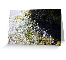 Water Warfare Greeting Card