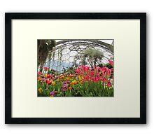 Flowers of Eden Framed Print
