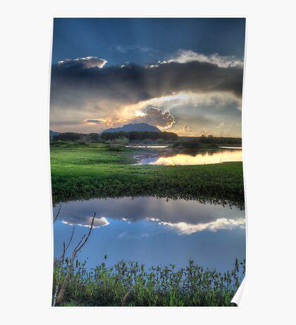 Pond to Pond Poster
