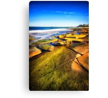 King of Rock.. Canvas Print