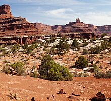 Along Canyonlands White Rim by Owed To Nature