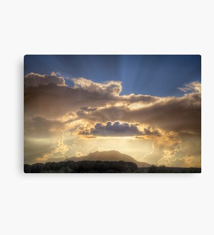 Scatter It Canvas Print